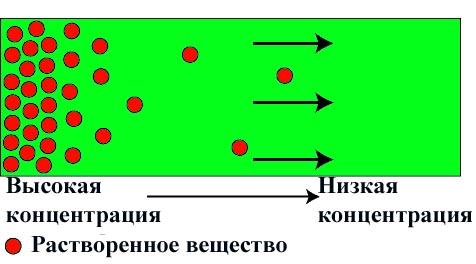 Схема молекулярной диффузии